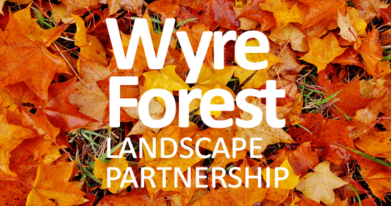 WFLP Partnership
